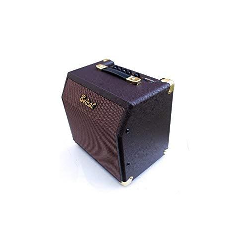 Amplificador de 15 W para Guitarra Acústicca Belcat Morado