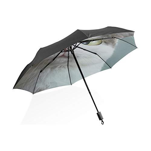 Junge Kinder Regenschirm lustige Katze beim Augenarzt Appointmet Schielen tragbare kompakte Taschenschirm Anti-UV-Schutz Winddicht Outdoor-Reisen Frauen Kid Umbrella Boy