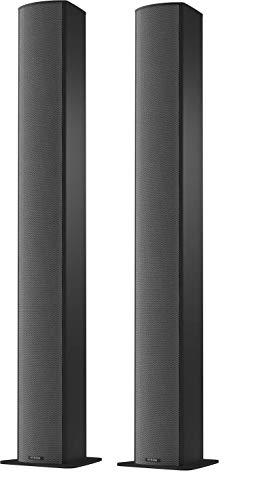Piega Switzerland TMicro 60 AMT Premium Standing Two Speakers Black Anodized