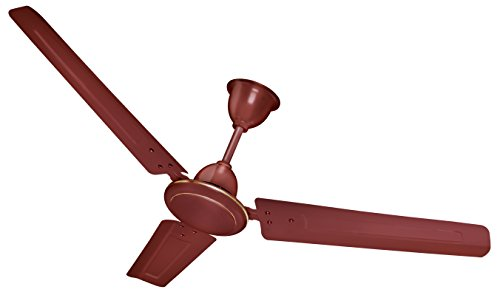 Brissk Ceiling Fans 601 (Brown)