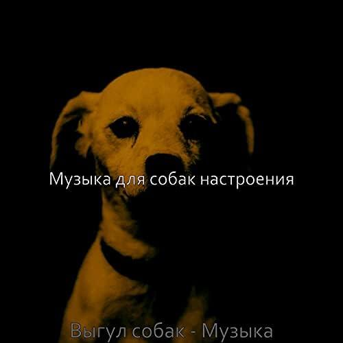 Музыка для собак настроения