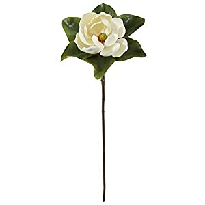 Nearly Natural 34in. Magnolia Artificial (Set of 3) Silk Flowers, 34 in, White