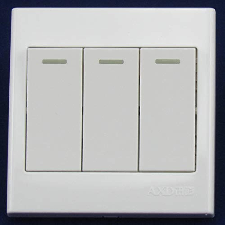 Single Control Switch Panel 10a