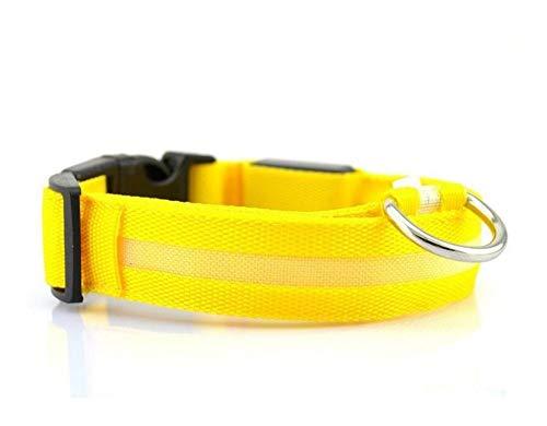 SFQRYP 7 colores LED luces collar de perro seguridad nocturna anti-pérdida intermitente collar de mascotas de nylon brilla en el collar para perros pequeños (color: collar amarillo, tamaño: S)