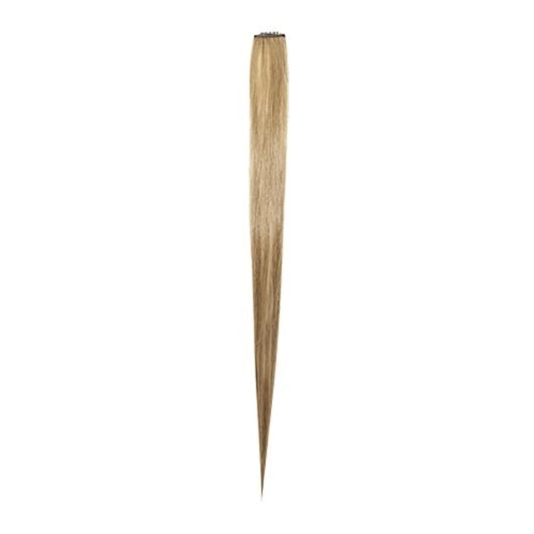 熱心な頭海峡ひもエチュードハウス ETUDE HOUSE マイビューティーツールカラーヘアピース #アッシュブロンド My Beauty Tool Color Hair Piece #Ash Blonde [並行輸入品]