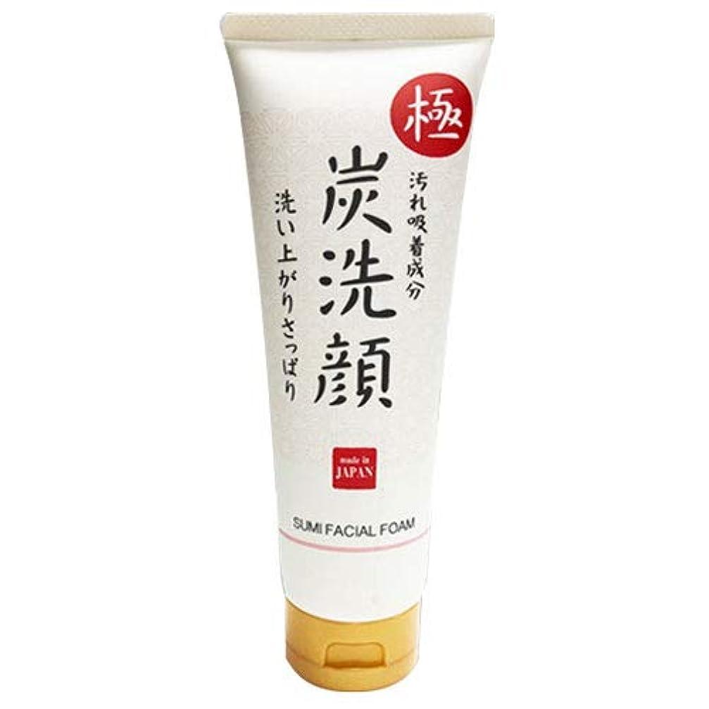 伝染性の前部通信する極 炭洗顔 日本製 炭 洗顔 フェイスケア 肌 美容 スキンケア クレンジング 素肌 もっちり泡洗顔 化粧品 メイク落とし 毛穴ケア 毛穴汚れ