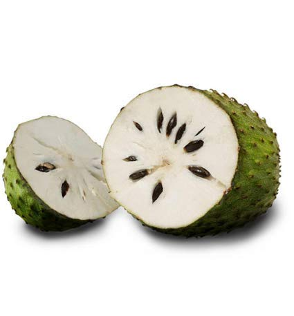 KINGDUO 20Pcs/Pack Corossol Semences Graviola Guanabana Annona Muricata Jardin Fruit Rare des Semences D'Arbres