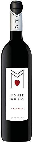 CRIANZA de bodega Monte Odina | vino tinto crianza de Somontano