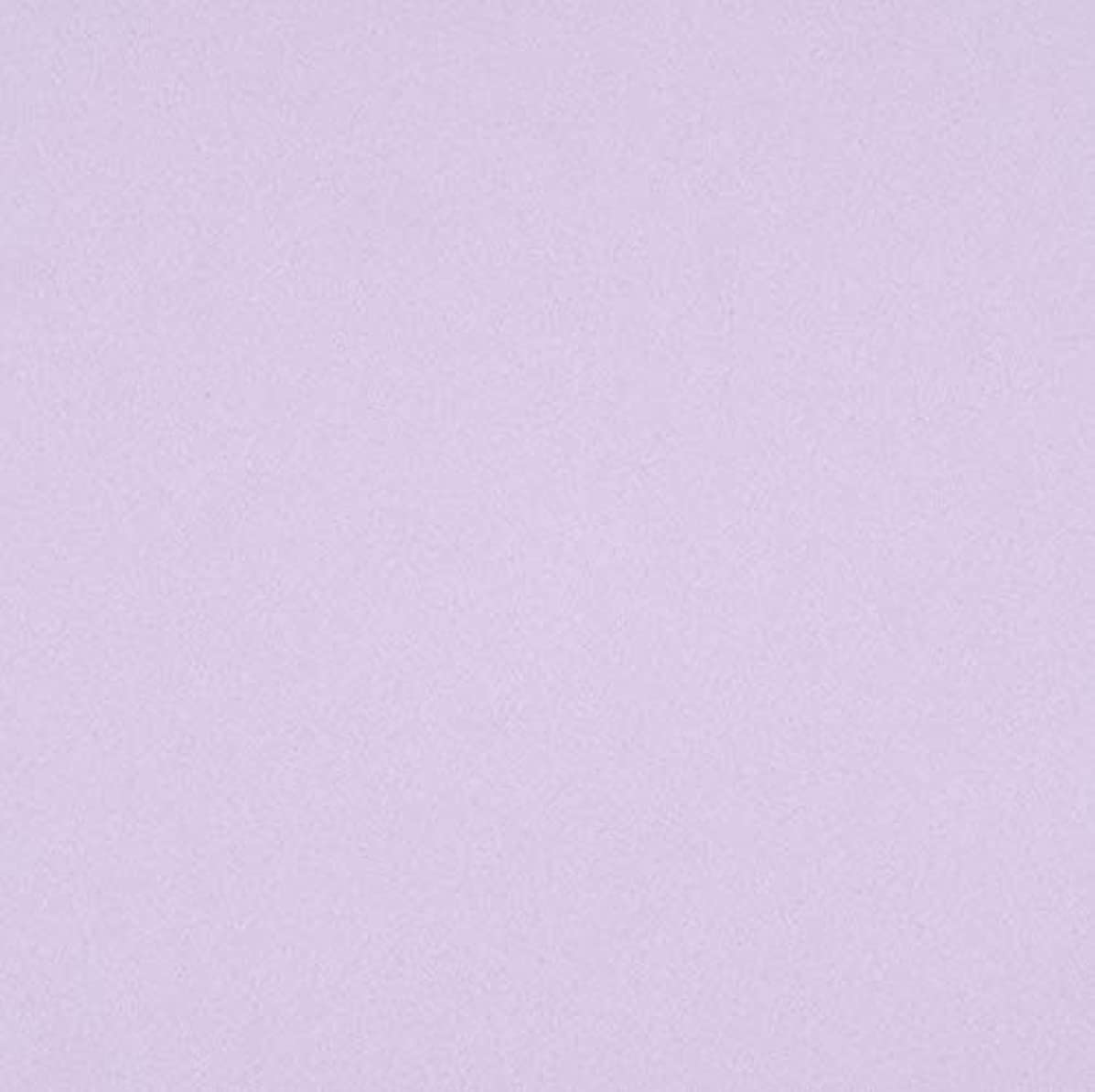 Darice 1040-65 Foamie Sheet Lavender 2Mm 9X12, Multicolor