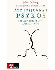 Att insjukna i psykos : förlopp, behandling, återhämtning