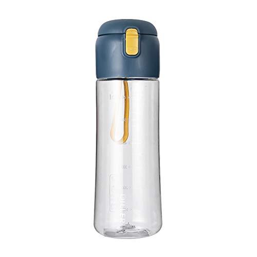 Serria Gourde Sport Bouteille d'eau Reutilisable avec Filtre, sans BPA et étanche ! 650ml pour École, Fitness, Gym, Travail
