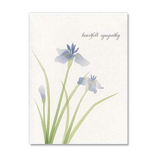 Blue Orchid Sympathy Greeting Card by Papyrus