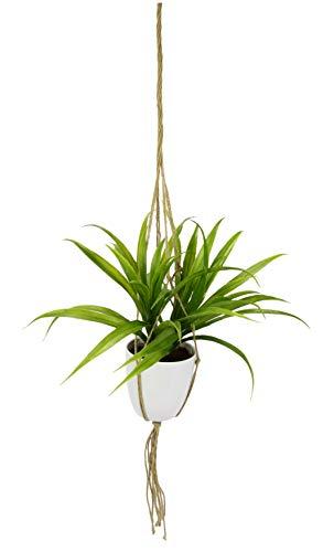 Flair Flower Künstliche Dracena in Hängeampel Kunst Dekopflanze Deko Blume Pflanze Grünpflanze hängend Blumenampel Wand Blumentöpfe zum Aufhängen Pflanzenhalter Seil, grün, 35 cm