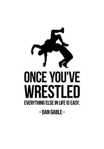 Andreadesigns Once You've Wrestled Inspirational Quote Wall Decal Sports Fight Wrestling Motivational Phrase Vinyl Sticker Lettering Print Home Poster Art Kids Boys Room Gym Club Decor 38asl