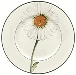 Villeroy and Boch Flora Salad Plate Daisy 8 1/4 in.