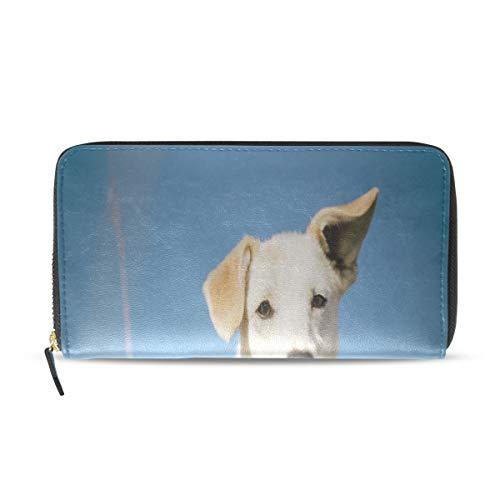Plsdx Lindo feliz perro corbata largo pasaporte embrague monederos cremallera billetera caja bolso dinero organizador bolsa titular de la tarjeta de crédito para dama mujer niña hombres regalo regalo