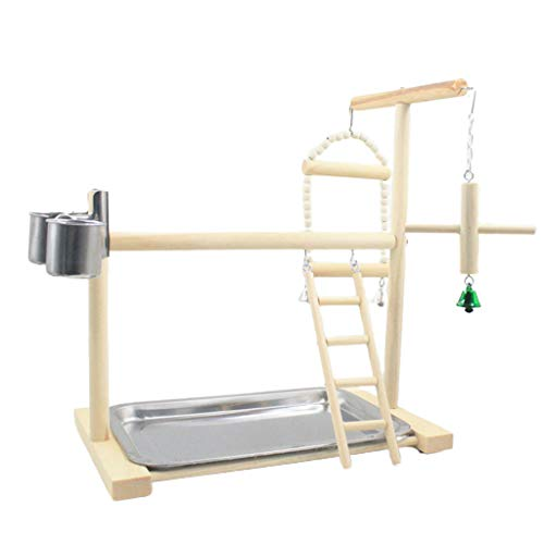 BINGBIAN Parrot - Escalera de madera para parque de juegos con tazas, soporte de juegos para perca, soporte de gimnasio