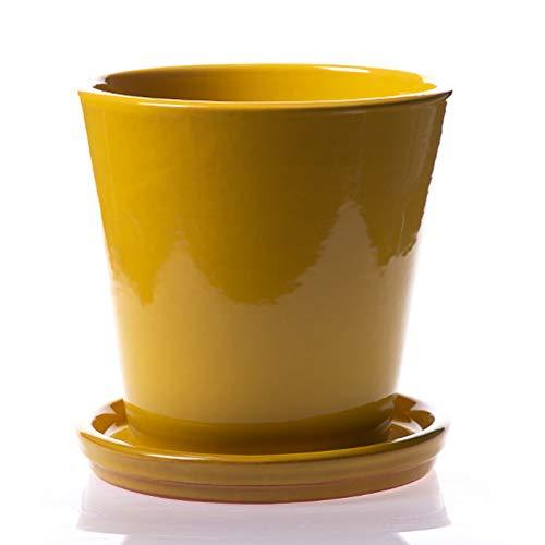 Maceta DE Barro ESMALTADA EN Color Amarillo+ Plato. Modelo CAÑA 2. Medidas 23X21.