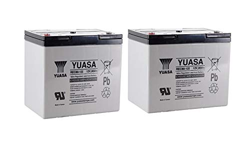 2X AGM 12V / 80Ah Yuasa loodacccu - REC80-12I cyclusvast compatibel met 60 Ah, 75 Ah, 77 Ah