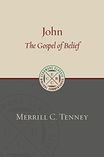 John: The Gospel of Belief: An Analytic Study of the Text (Eerdmans Classic Biblical Commentaries) (English Edition)