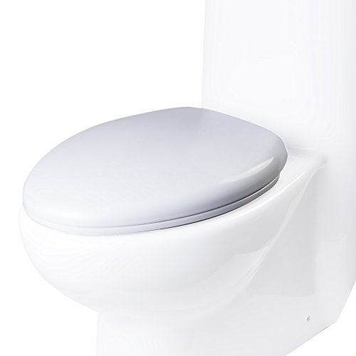 EAGO R-309SEAT Replacement Soft Closing Toilet Seat for TB309, White