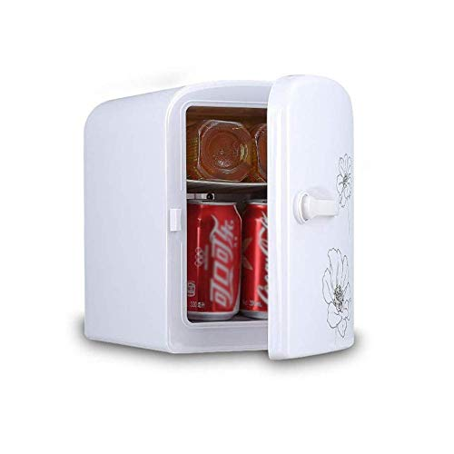 REDTAXON Refrigerator 4L Mini Fridge Cooler and Warmer – Thermoelectric Food & Drinks Chiller Ideal for Home,Office, Car, Dorm