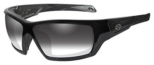 HARLEY-DAVIDSON Wiley X Backbone LA Light Adjusting Motorrad Brille