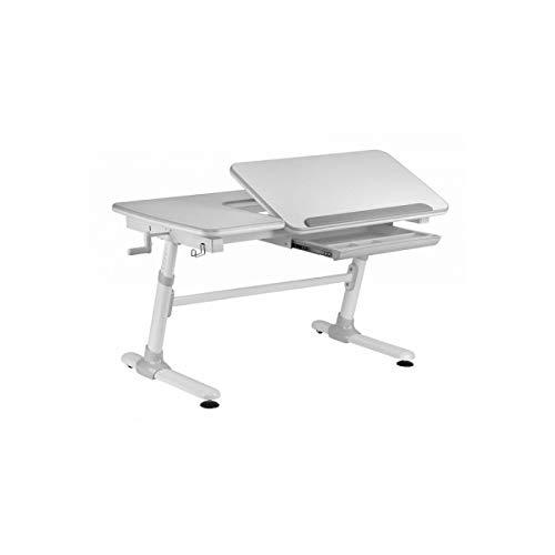 Vipack COMFORTLINE Schreibtisch 502 Grau