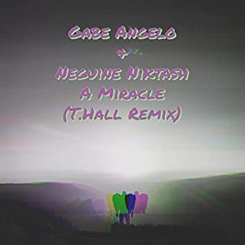 A Miracle (T. Hall Remix)