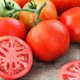 Porte-tomate délicieux Seeds- Guinness World Record depuis 28 ans! (100)