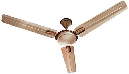 Crompton ARIYABRIZ Prime 0.6M Coral Gold 4 Blades Ceiling Fan