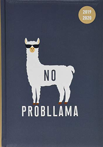 Collegetimer Llama 2019/2020 - Lama - Schülerkalender A5 (15 x 21) - Day By Day - 352 Seiten - Terminplaner - Notizbuch