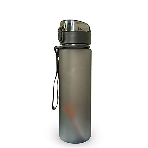 PENVEAT Botella de Agua Deportiva sin BPA, 400 ML, 560 ML, 560 ML, Color Gris Claro