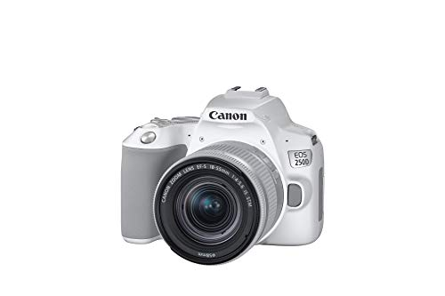 Canon EOS 250D Digitalkamera (24,1 Megapixel, 7,7 cm (3 Zoll) Vari-Angle Display) mit Objektiv EF-S 18-55mm F4-5.6 is STM weiß/Silber & SanDisk Extreme PRO 128GB SDXC Speicherkarte bis zu 170 MB/s