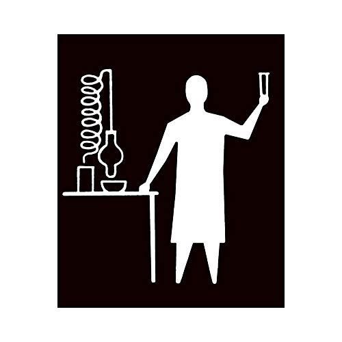 SUPWALS Wandtattoos Chemiker Im Labor Wandaufkleber Aufkleber Design Chemie Aufkleber Wand Home Schlafzimmer 48X57Cm
