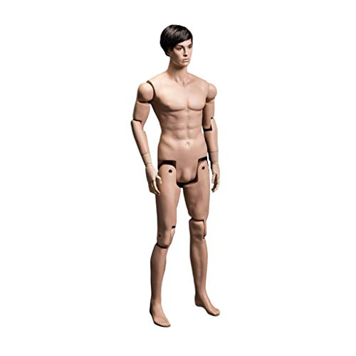 USAKHV Realistic Joints Fiberglass Male Mannequin Full Body Model Stand HM01