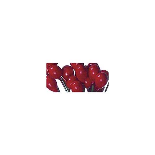 Rayher 5122018 Ilex-Beeren, 6mm ø, Bund 72Stück, rot