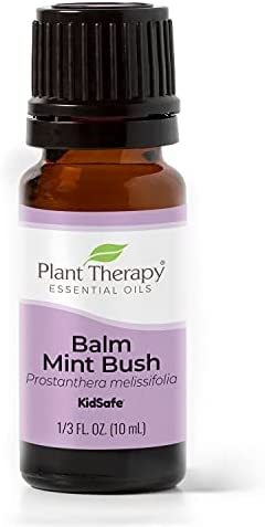 Top 10 Best plant therapy lime essential oil Reviews