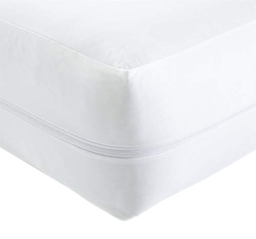 Olivia Rocco Anti Bed Bug Zipped Waterproof Mattress Total Encasement Protector Cover, Double