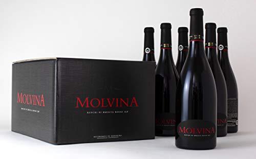 MOLVINA Rotwein Premium Vintage GOLD 2015 | Satin-glatte rote Beere | Ronchi di Brescia Rosso | Aus einem italienischen Boutique-Weingut, Eichenfass 60mnt gereift | 6 x 75 cl Flaschen