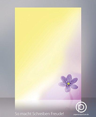 Poesie bloemen briefpapier set betoverende anemone, 200-delig met 100 vellen motiefpapier DIN A4 en 100 passende DIN LANG-brievenveloppen