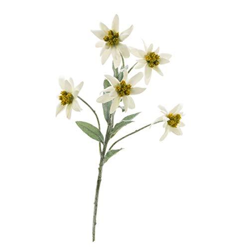 artplants.de Set 5 x Ramillete de Edelweiss de plástico Sophia, Blanco, 40cm, Ø5-6cm - Flor de Las Nieves Artificial - Pack de Plantas Falsas