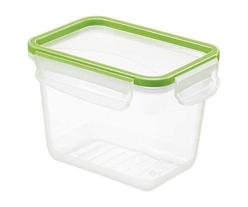 Rotho Clic & Lock Boîte pour Aliments Frais de 1L avec Couvercle et Fermeture, Plastique (PP) sans BPA, Transparent / Vert, 1L (16,1 x 12,0 x 11,3 cm)