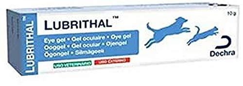 Dechra Lubrithal Gel Ocular Humectante para Perros y Gatos - 10 gr