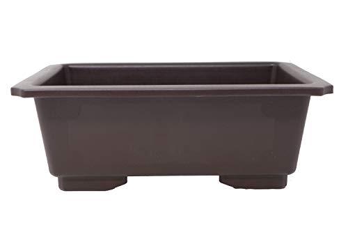 Rectangle Deep Brown Plastic Bonsai Training Pot (LD-F013-10) (1)
