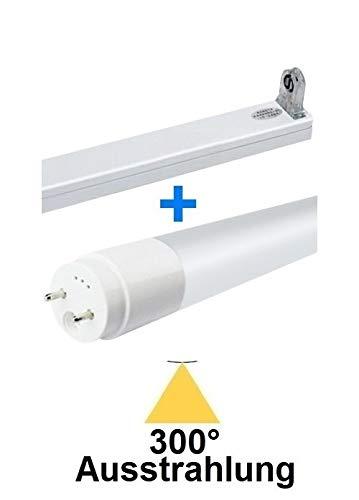 60 cm LED-buis T8/G13-8 Watt - 300° UITSTRALING - 1100 lumen - daglicht wit/koud wit ~ 6000 Kelvin + 1 x LED buishouder wit, vervangt 18 TL-buizen