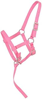adjustable foal halter