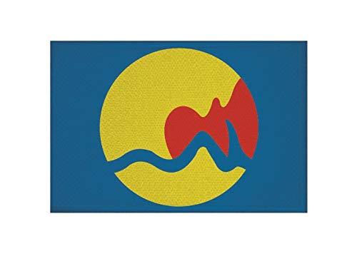 U24 Aufnäher Grand Rapids Michigan Fahne Flagge Aufbügler Patch 9 x 6 cm