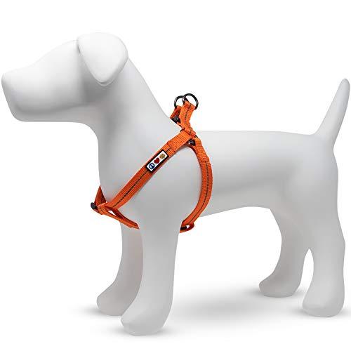 Pawtitas  Arnes para Perro Reciclado con Costura Reflectante | Arnes para Cachorros Hecho de Botellas de plástico recogidas del Oceano - Arnes Habanero Naranja Pequeño