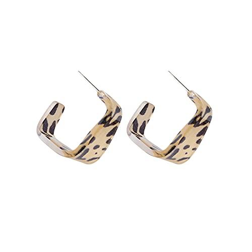 YHFJB Pendientes acrílicos geométricos en forma de C, diseño de tortuga geométrica, redondos, ligeros, redondos, para mujeres y niñas, leopardo gris